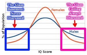 Gender difference in IQ Glass ceiling basement